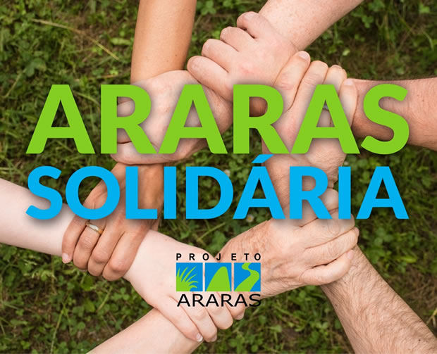 projetoAraras